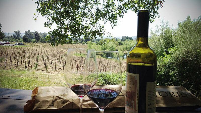 sonoma vineyard table